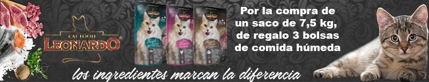 Comida de calidad para gatos leonardo