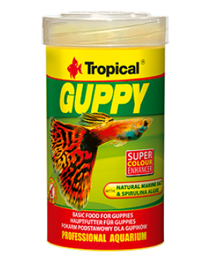 Tropical Guppy alimento para peces guppy