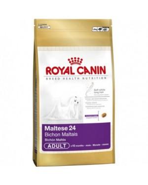 Royal Canin Maltese 24