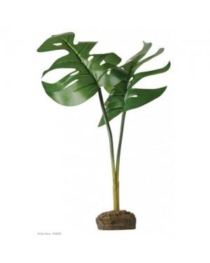 EXO TERRA Planta Scindapus