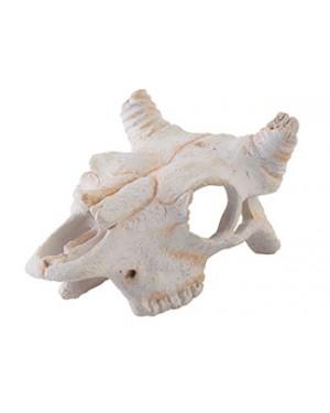 EXO TERRA Dino búfalo nano refugio fósil