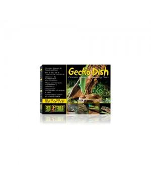 EXO TERRA gecko dish comedero bebedero gecko