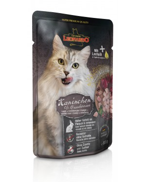 Leonardo Conejo + Arandanos comida húmeda gatos