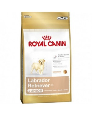 Royal Canin Labrador Retriever Junior 33