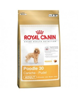 Royal Canin Poodle 30