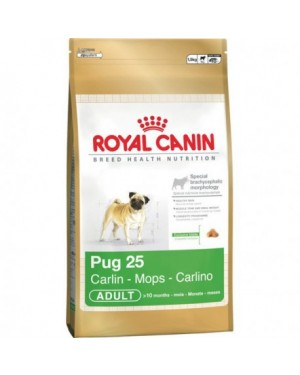 Royal Canin Pug 25