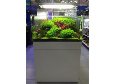 Aprovecha nuestros precios en acuarios para peces en Sevilla