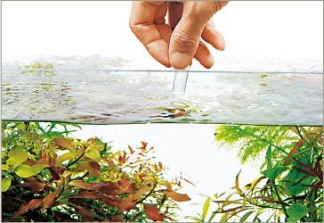 test agua acuario