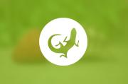 venta de reptiles Tropican Mascotas